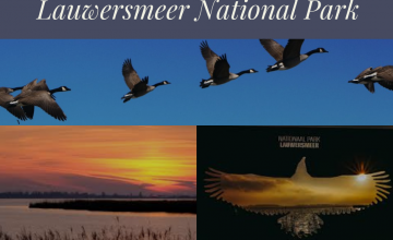 Trip to Lauwersmeer National Park